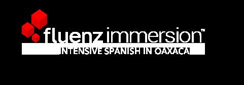 INTENSIVE SPANISH IN OAXACA